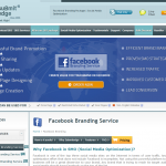 SubmitEdge Facebook Branding service thumbnail image