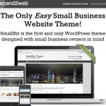 SmallBiz Theme thumbnail image